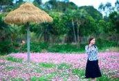 大鹏美丽乡村带家人孩子一起体验赏花