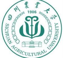 2018年四川农业大学网教春季招生专业
