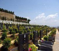 海口有哪些公墓海福陵园,风水