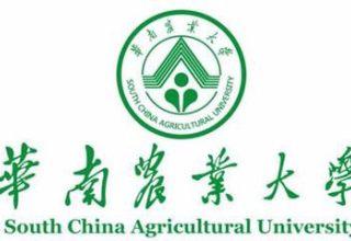自考华南农业大学财会与审计(专科、本科)