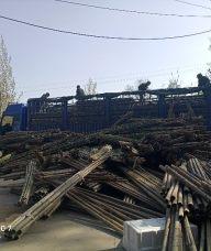 唐山厂家直销竹梯子竹跳板竹片竹竿菜架竹旗杆竹等竹木产品