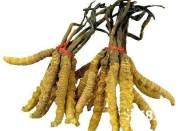 南充长期专业回收烟 老酒 虫草