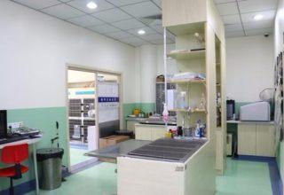 深圳福田竹子林24小时营业急诊宠物医院(正规医院)