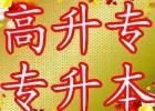 重庆自考专本科毕业申请的条件-雨萱教育