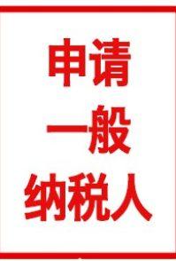 北京大兴区一般纳税人申请