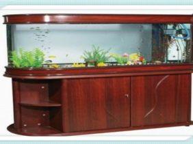 专业承接个人、公司、别墅、商场的鱼缸鱼池清洗、消毒