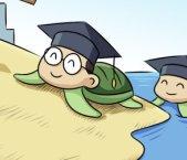 成都国外学历学位认证服务——留学生福利