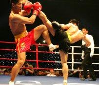北京少年散打培训班