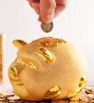 企业申请一般纳税人所需材料