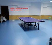 乒乓球运动地板 乒乓球地胶