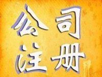 案例一:上海实业公司注册内容展示