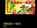 着色膨大一喷灵-山东天威农药与限公司-青州奥诺农化公司