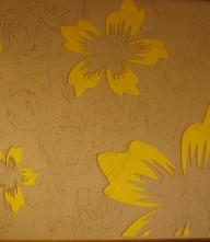 苏州硅藻泥-苏州硅藻泥装饰