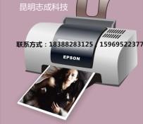 打印机无法打印怎么办?