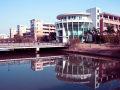 中山大学自考金融管理专业