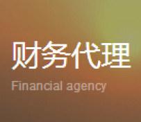 专业财务代理
