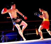 北京泰拳格斗培训班