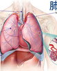 肺癌化疗副作用的应对方法