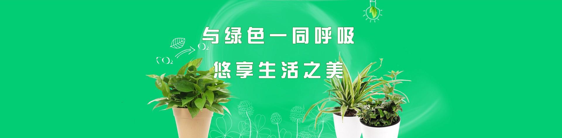 湖南花语茶香工作室