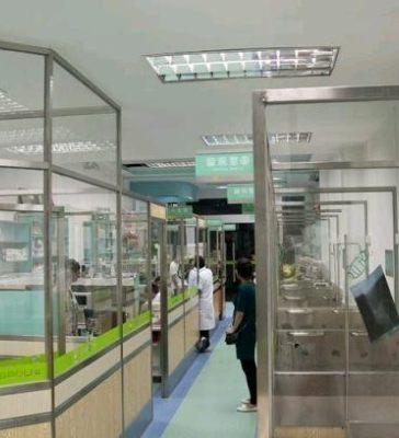 深圳宠物救助机构