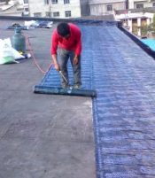 屋 面 防 水