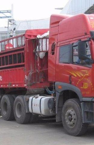 佛山专业物流 货运公司,回程车 运输,整车零担托运