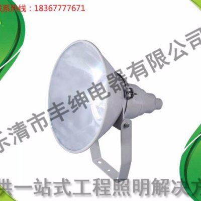 NTC9200防震型超强投光灯【丰绅】400W