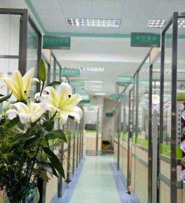深圳宠物急救中心