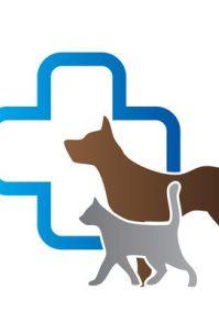 深圳哪家宠物医院治犬瘟 细小 猫瘟技术好收费便宜?