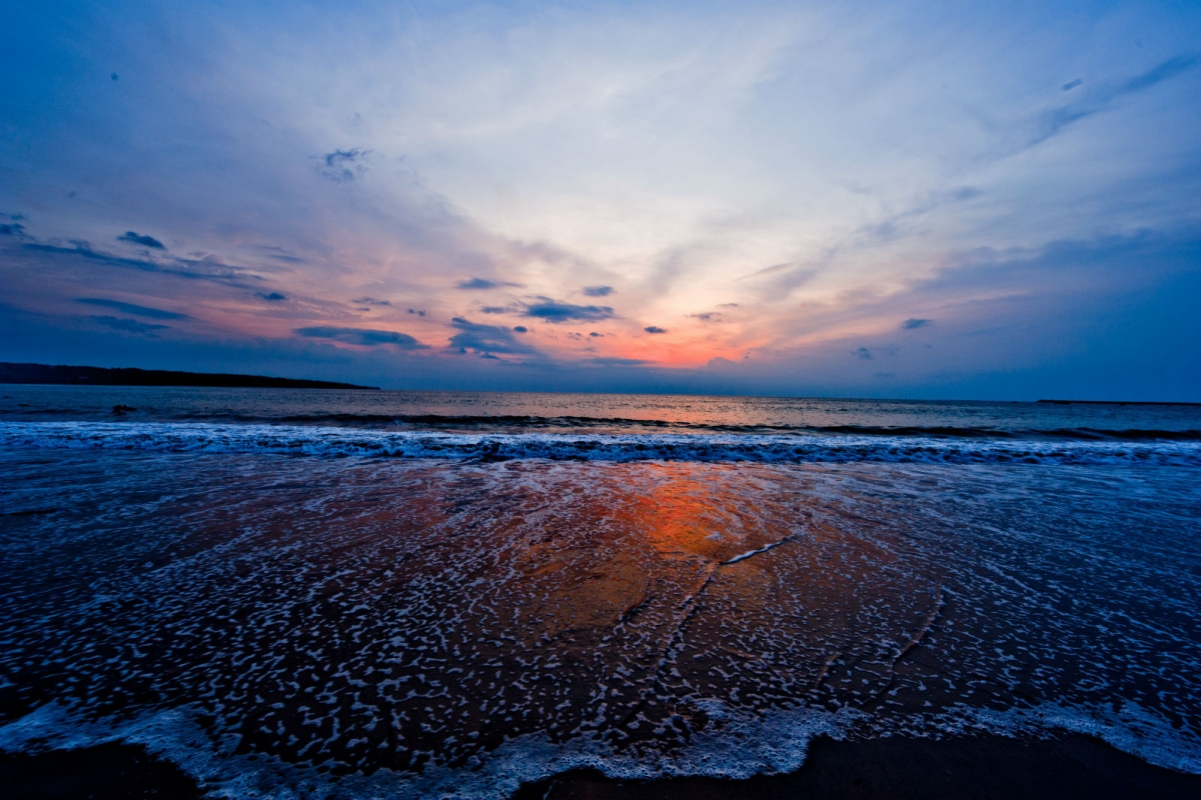 海龟岛上的大海龟,大蟒蛇,大蜥蜴享  受的是明星待遇,让到巴厘岛南湾