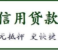 南京小额贷款, 个人无抵押,