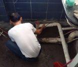 专业疏通下水道,马桶,厕所,化粪池清理,高压车冲洗管道