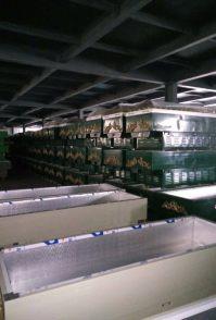 冰棺最大销售基地