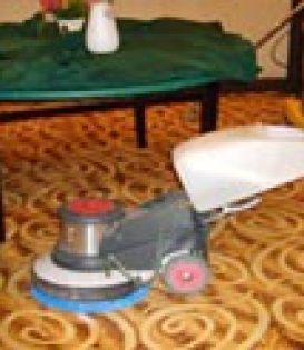 深圳南山蛇口南油桂庙片区专业地毯清洗保洁