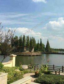 活水岛屿别墅,30分钟到上海,超低总价