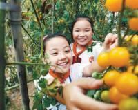 2018深圳小学生秋游、春游活动方案!班级秋游行程