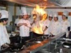烹饪 专业
