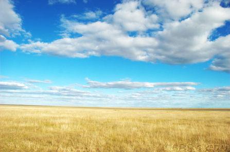 塞外草原,心动秋季