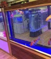 昆明出售鱼缸