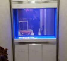 南京森森品牌鱼缸销售