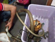 专业疏通下水道马桶