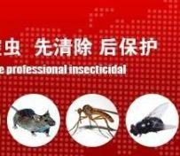 保定灭鼠公司