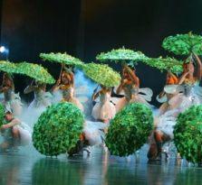 北京专业舞蹈教学
