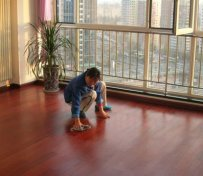 上海公司保洁、家庭保洁服务。