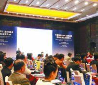 上海翻译公司法律合同翻译专家