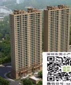 观澜村委统建楼金利名苑11500元/平米起首付3成 分期6年