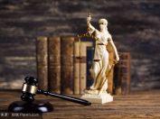 法律咨询 (8)