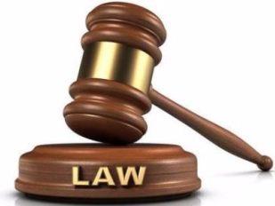 法律咨询 (14)