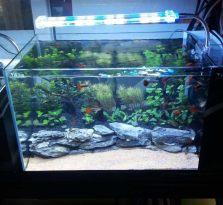 南京鱼缸,江宁水族馆 :森森鱼缸,佳璐鱼缸