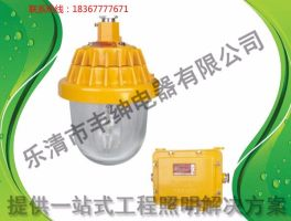 【丰绅】BPC8720防爆平台灯-150W